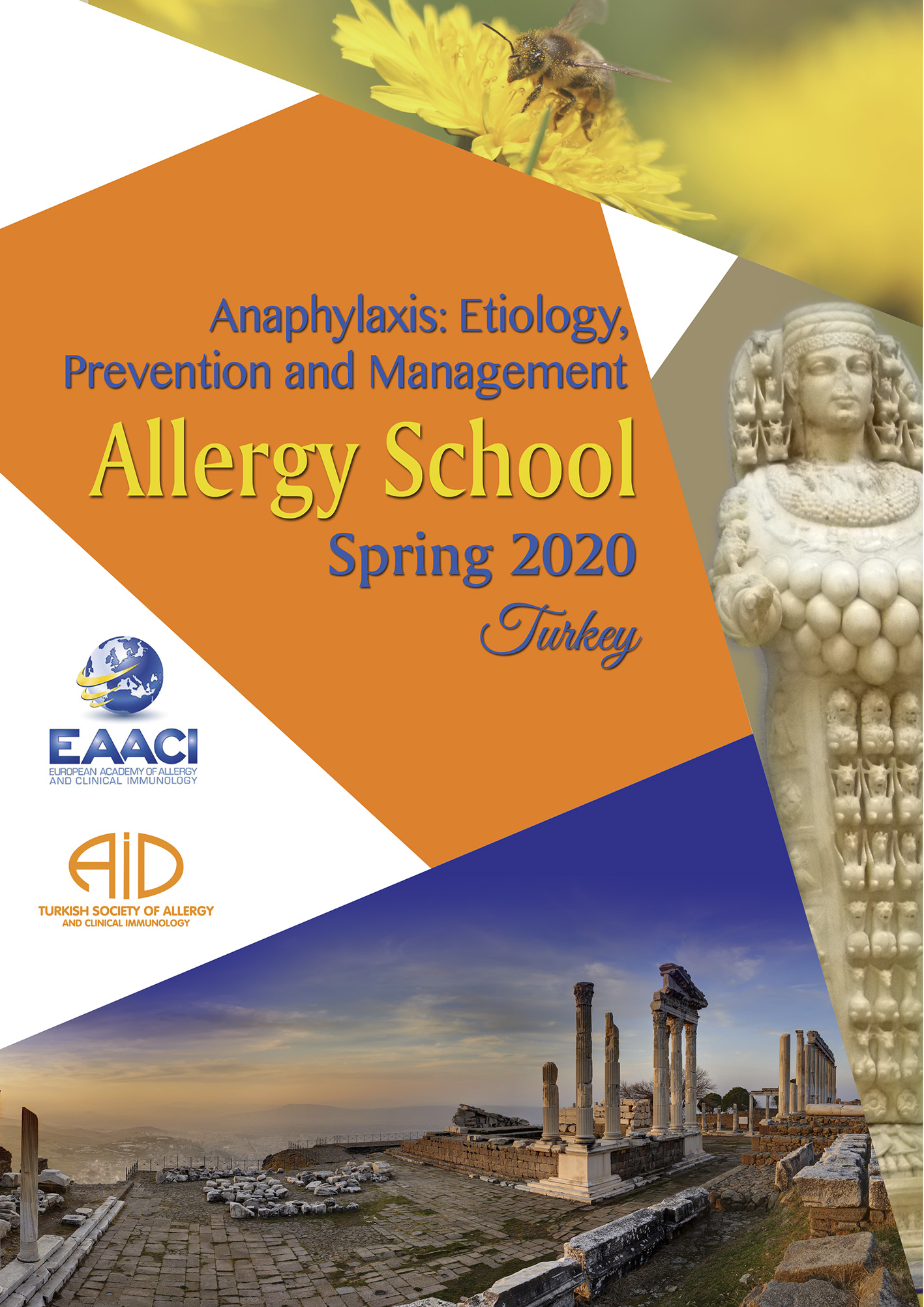 allergy school 2020 İzmir Turkey