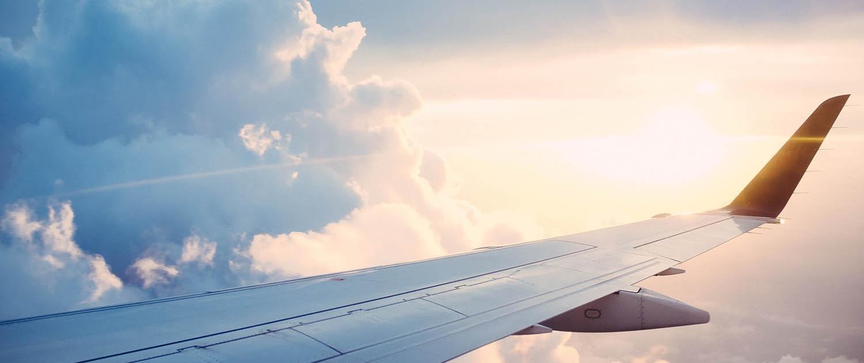 uçakta alerji