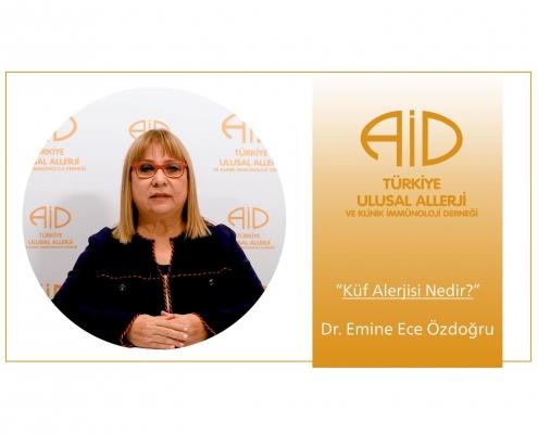 küf alerjisi - Dr. emine ece özdoğru