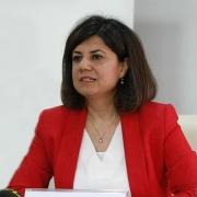Prof. Dr. Emine Mısırlıoğlu
